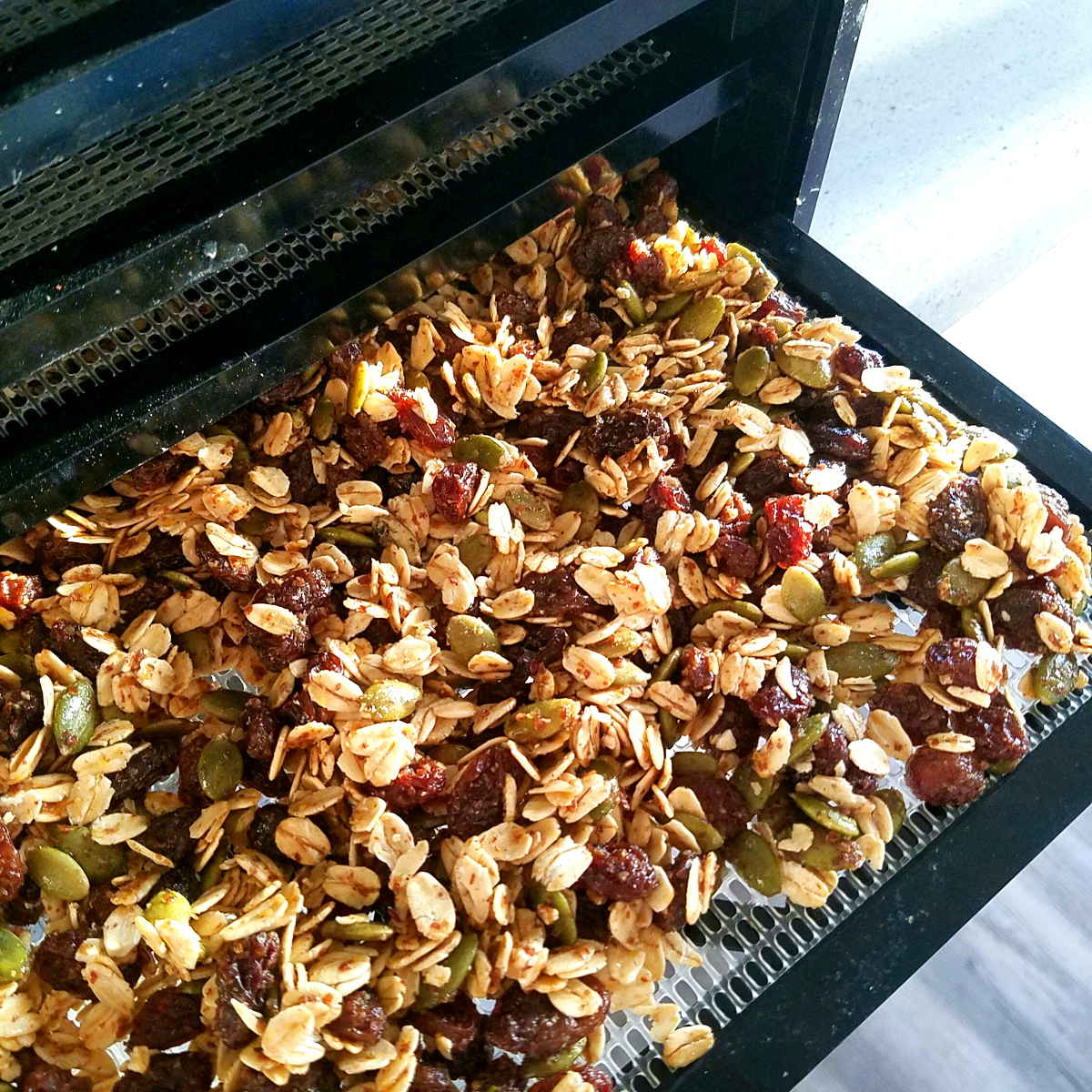 raw vegan dehydrator granola