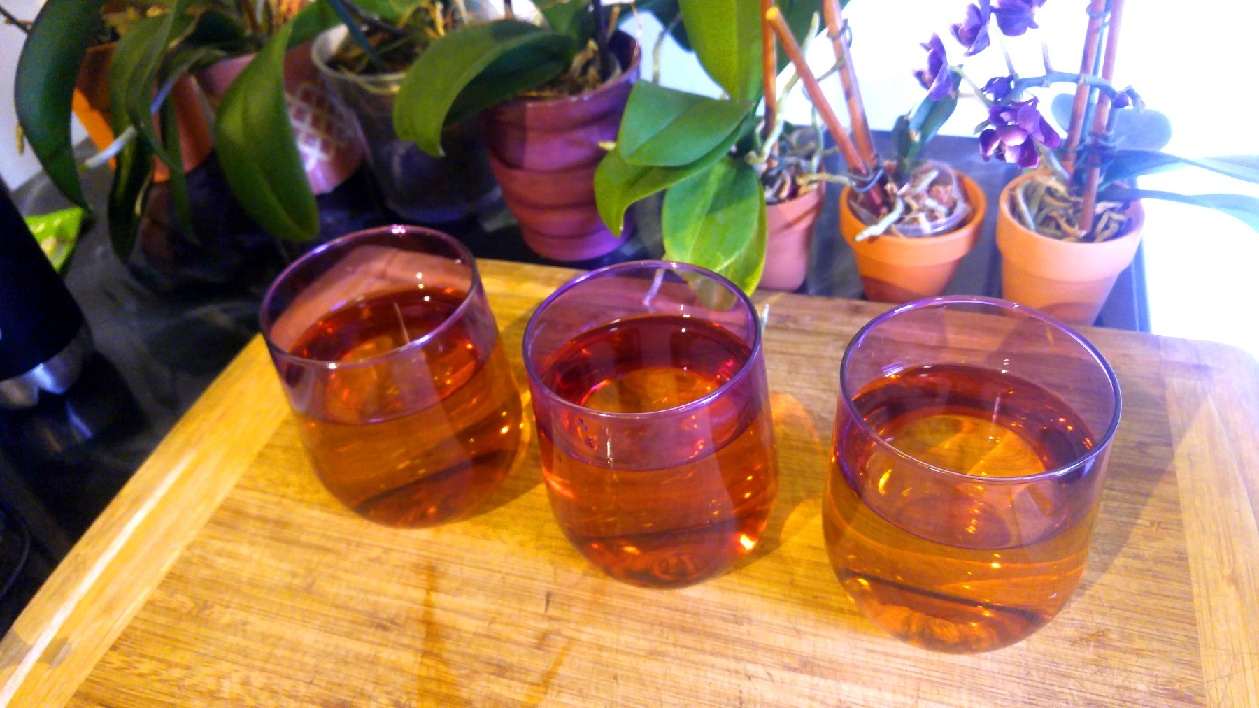 kombucha in purple glasses